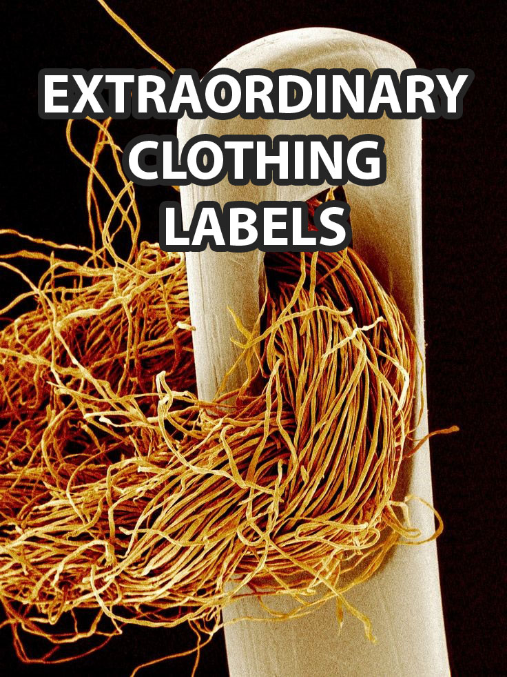 Extraordinary Clothing Labels